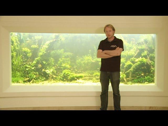 ANIMALISCH die Tiersendung Nr.09  10`000 Liter Aquarium mit Andi Hofstetter