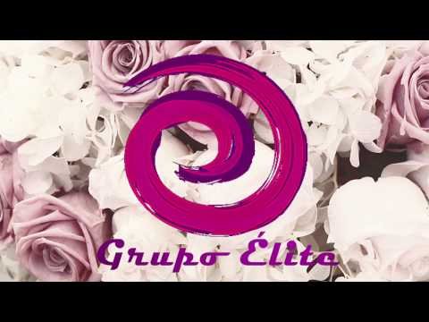 Vídeo promo Grupo Élite 2018