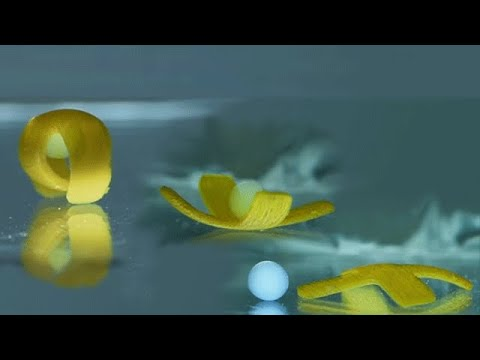 Soft robot inspired by sea creatures can walk, roll, and transport cargo