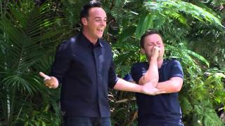 Steve Davis Slips Over Before The Trial Even Begins | I'm a Celebrity Get Me Out Of Here!