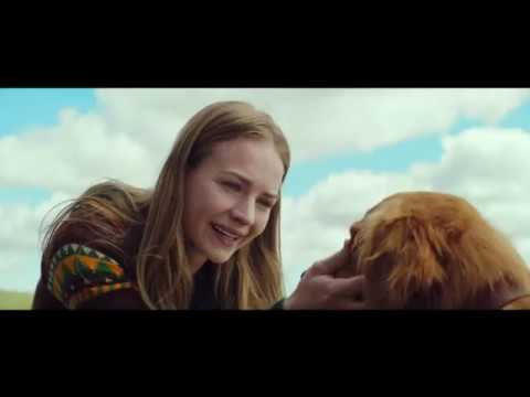 A DOG'S PURPOSE - OFFICIAL TRAILER 2 [HD]