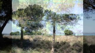 preview picture of video 'Torrevieja La Mata Salinas Country Park Spain'