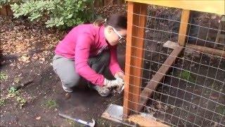 Chicken Coop Build Video 5  Hardware Cloth, Door Hinges