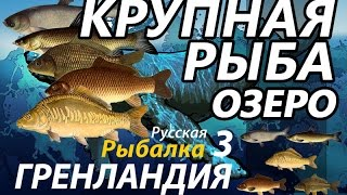 Крупная рыба Озеро / РР3 [Русская Рыбалка 3 Гренландия]
