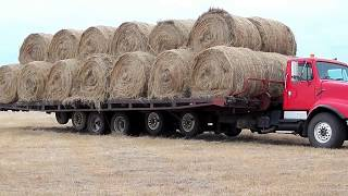 World Amazing Hay Bale Handling Technology Modern Agriculture Heavy Equipment Mega Machines Tractor