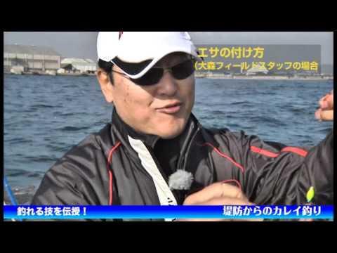釣れる技を伝授!堤防からのカレイ釣り