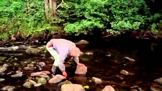 Andy Goldsworthy Documentary   Rivers And Tides의 사본
