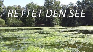 Rettet den See + Open Air Akustikkonzert | MaximNoise