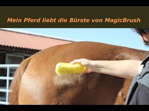 MagicBrush, die super geniale Pferdebürste
