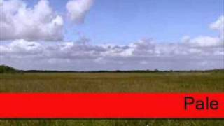 Hoot: Floridays I By:Jimmy Buffet