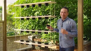 Youtube thumbnail for How to make a beautiful hanging herb garden feature, part 1