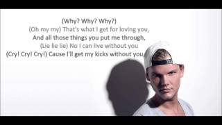Avicii ft. Audra Mae & Sterling Fox - Shame On Me (lyrics)