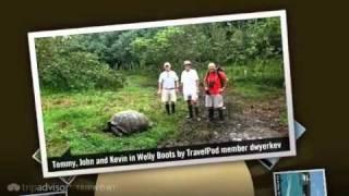 preview picture of video 'Santa Cruz Island, The Galapagos Dwyerkev's photos around Puerto Ayora, Ecuador (travel pics)'