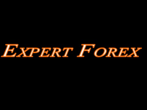 Forex старт с нуля