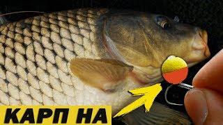 На что лучше клюет рыба в жару