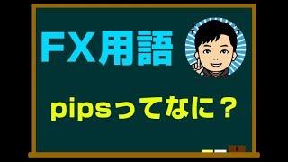 FX用語:pips(ピプス)という単位について