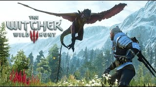 The Witcher 3: Wild Hunt video