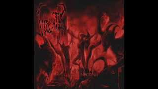 Violate - Chaos Unbound