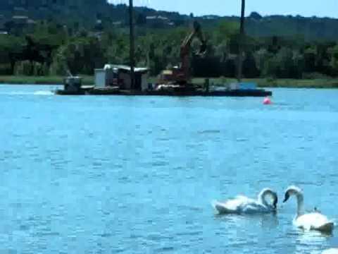 Una gru in barca nel lago di Varese