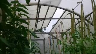 Термопривод усиленный от компании РИАЛ - видео 1