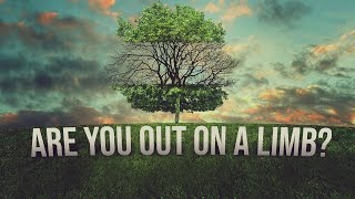 Are You Out On A Limb?