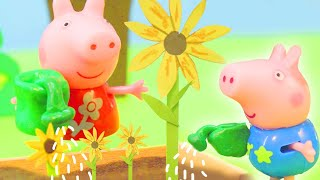 Peppa Pig Official Channel 🌻 Peppa Pig Stop Motion: Peppa Pig Plants Huge Sunflowers