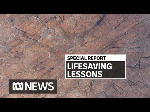 What we've learned from past bushfire disasters — and what more can be done | ABC News