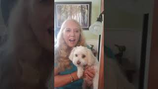How to qualify for an Emotional Support Animal video 7-19