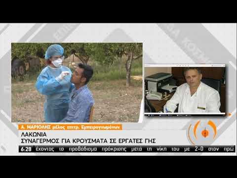 Λακωνία | Εκτάκτως ο Σ. Τσιόδρας – Αυξημένα κρούσματα | 29/09/2020 | ΕΡΤ