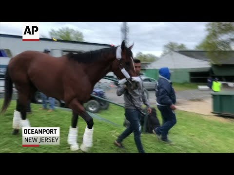 Maximum Security is back at Monmouth Park in New Jersey. The first Kentucky Derby winner disqualified for interference in the race's 145-year history arrived at the track shortly before 6 a.m. Tuesday. (May 7)