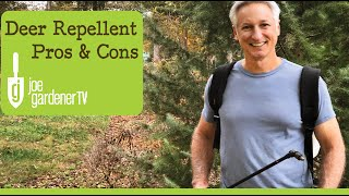 How to Keep Deer from Eating Your Plants - Deer Repellent Pros & Cons