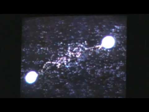 *# Free Watch Gunbuster 2 [VHS]