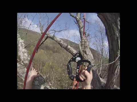 A short video showing Dan Weise doing a SRT (single rope technique) ascent into The Dover Oak tree on Arbor Day 2017 on the Appalachian Trail, Pawling, NY