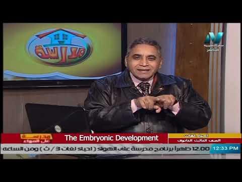 أحياء لغات للصف الثالث الثانوي  2021 -  الحلقة 22 – The Embryonic Development