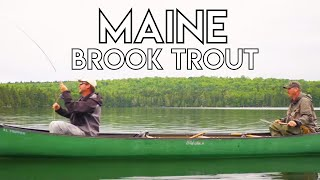 Maine Brook Trout Fishing