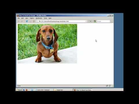 mp4 Html Coding Add Image, download Html Coding Add Image video klip Html Coding Add Image