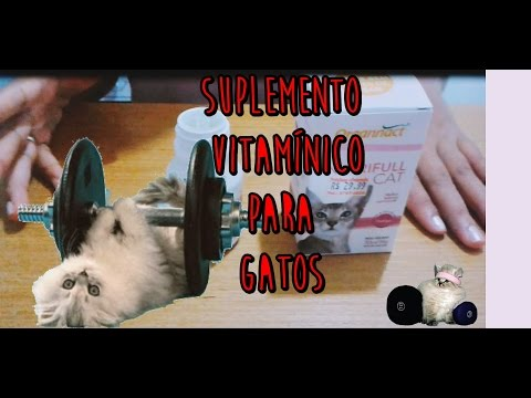 Suplemento Vitamínico Para Gatos - Nutrifull Cat