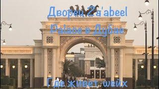 VLOG: Дубай/Дворец Zaabel Palace/Резиденция шейха Дубая