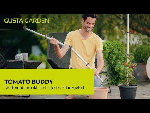 Setting up your Tomato Buddy (in German)