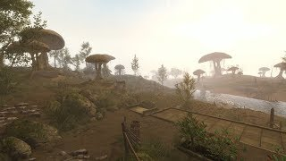 Skywind - 'Call of the East' Trailer 2019