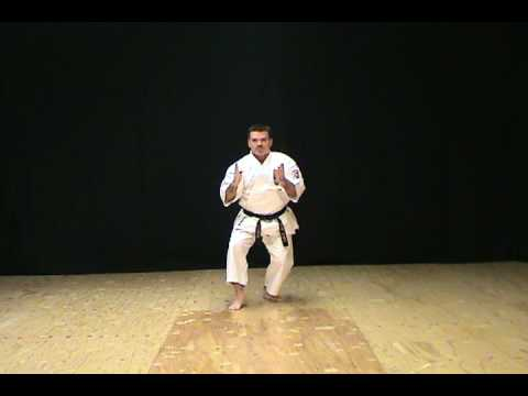 Seiunchin Kata of Isshinryu