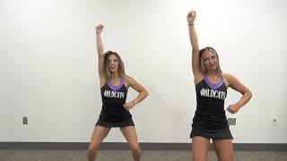 BOYS AND GIRLS CLUB   WILDCATS CHEER 3