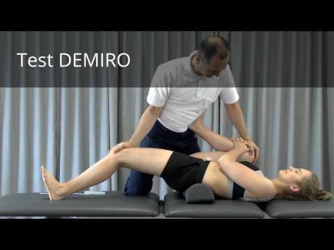 Program szkolenia w siłowni na grupach mięśniowych