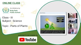 Class – III | Parts of Plants | Science For Kids | Easy To Learn | Ruby Park Public Thumbnail