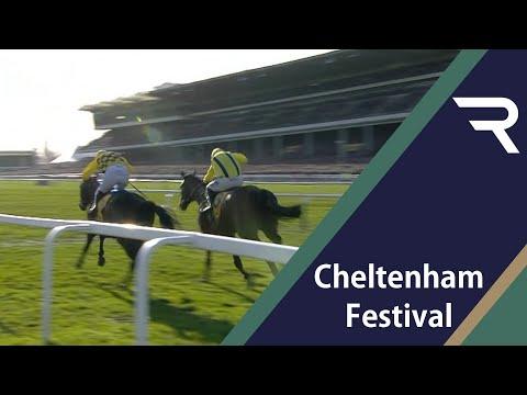 Gold Cup Dreams Flourish at the Cheltenham Festival