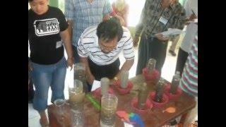 Tanam Padi Menggunakan Metode SRI (System Rice of Intensification)