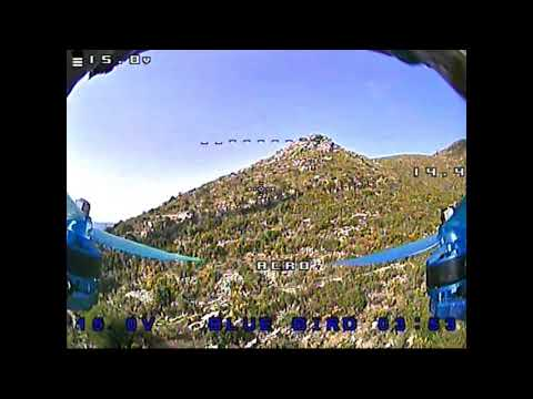 quotblue-birdquot-fpv