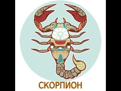 скорпион - что подарить?