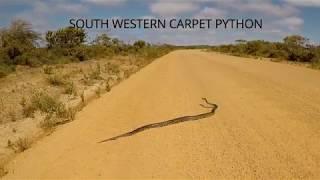 Duke of Orleans Bay, Esperance, Western Australia, Xmas 2017