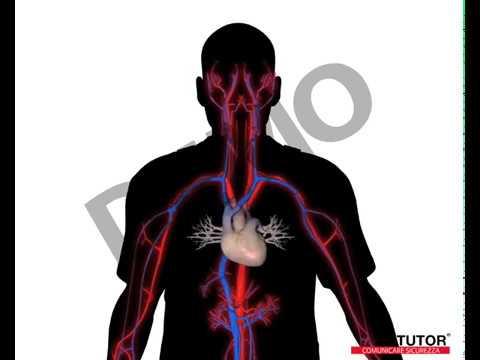 Terapia magnetica per lipertensione